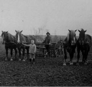 Feldbestellung Wilhellm Hanewinkel ganz rechts, Foto Archiv J. Grabbe